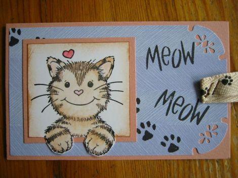 Katzen-Tag
